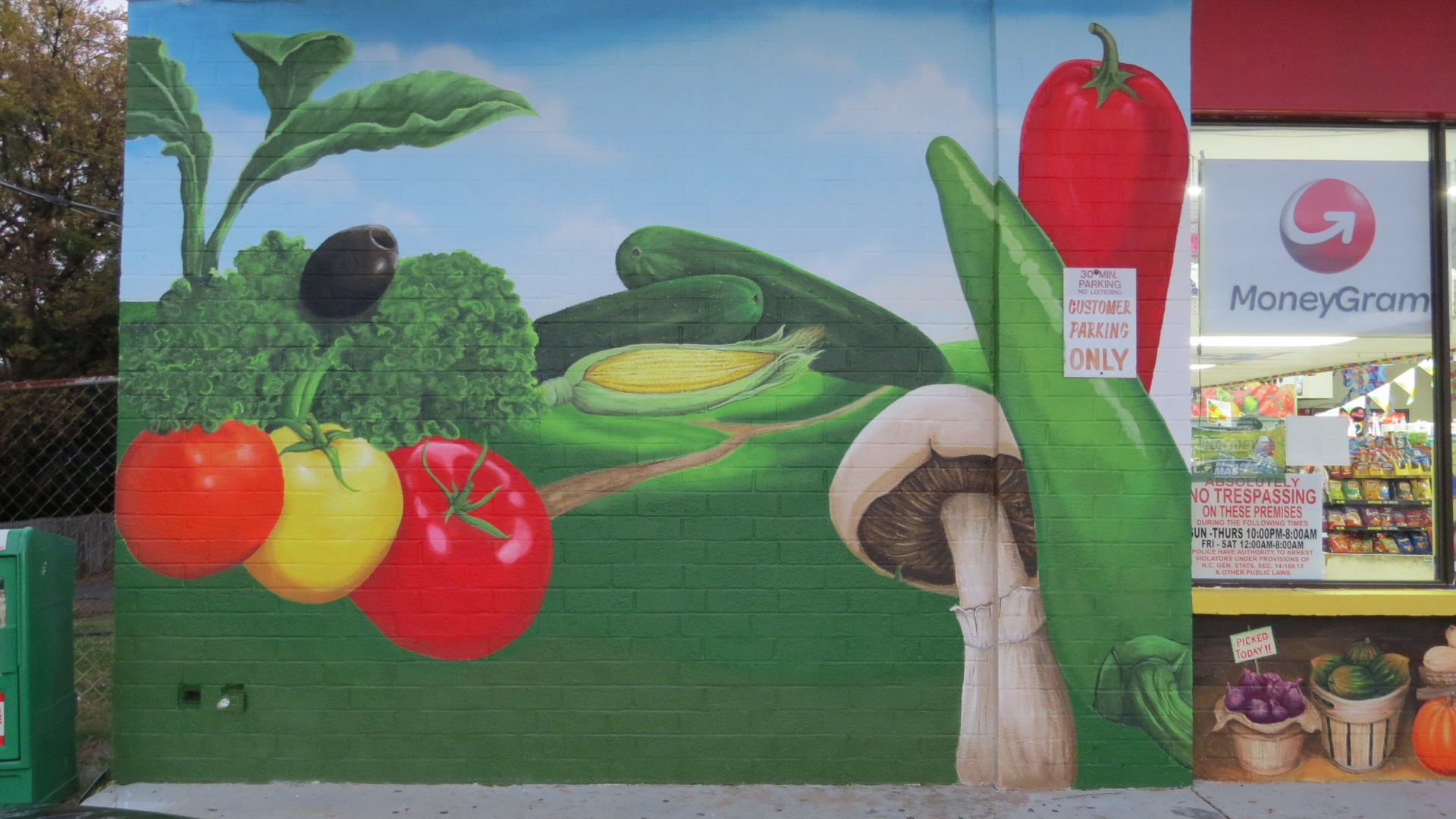 Left side Mural in Downtown Concord, NC 2015