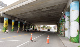 The 18 Pier Columns of the Tazewell Ave. Bridge ( Interstate 581) were covered with hand painted Mural Panels